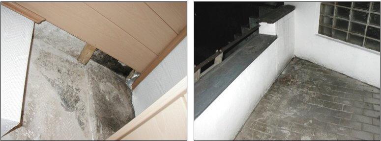 Schimmelbefall an einer Außenwand - I-O-K