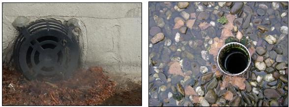 Schmutzansammlungen und Wasserstau vor einem (verschmutzen) Flachdach-Ablauf - © I-O-K.