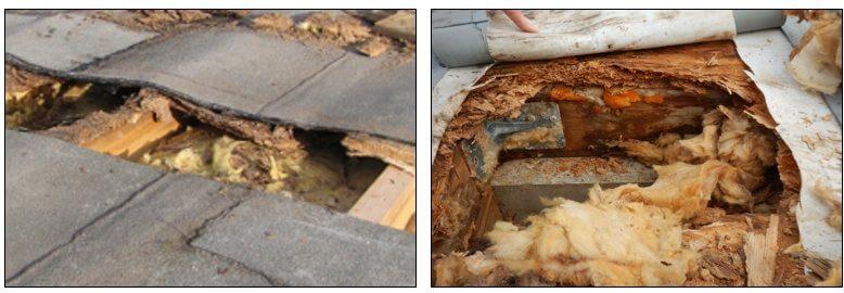 Zerstörte Flachdachkonstruktionen aus Holz - I-O-K